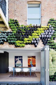 Creative & inspiring vertical gardens. Design by Greenwall. From the October 2015 issue of Inside Out magazine. Photography by Simon Whitbread. Available from newsagents, Zinio, www.zinio.com, Google Play, play.google.com/..., Apple's Newsstand, itunes.apple.com/... and Nook.
