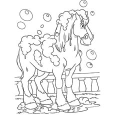 phillipe horse coloring pages printable