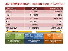 Human Design - 6 Colours of Digestion Variables