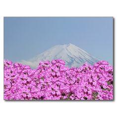 Fuji Behind Flowers