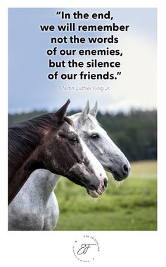 """""""In the end, we will remember not the words of our enemies, but the silence of our friends."""" ― Martin Luther King Jr. Quote - Zitat - of the day - horse"""