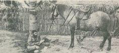 Um soldado em Moçambique aproveita uma pausa para ler as palavras que lhe foram escritas pelos seus entes queridos.1917.
