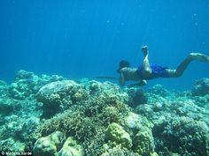 Στον βυθό για 13 λεπτά! Η γενετική εξέλιξη των ανθρώπων «ψαριών» της φυλής Bajau | Newsit.gr