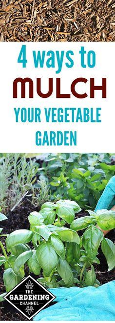 Deep Mulch Gardening , 263 Best Kitchen Gardening Images On Pinterest In 2018