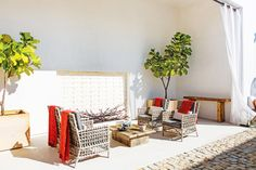 An amazing outdoor lounge area with fiddle leaf plants and fire pit