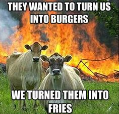 i think i find these as funny as i do because these two cows look so