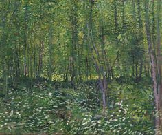 """Vincent van Gogh (1853-1890), """"Trees and Undergrowth"""" - Van Gogh Museum ~ Amsterdam, The Netherlands"""