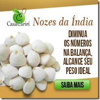 Sementes Nozes da Índia - Você já ouviu falar que essas pequenas sementes de nozes da índia tem um poder inacreditável de fazer qualquer pessoa emagrecer muito rápido?