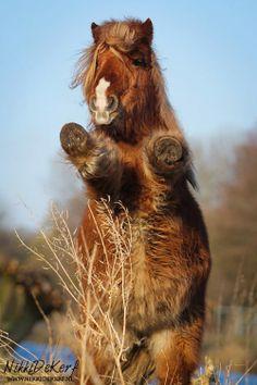 I just want hugs!!