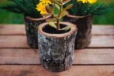 "hullocolin: "" Natural wood log planters now available in my Etsy store Tumblr 