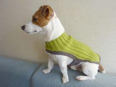 El örgüsü yeşil renk köpek giysi modeli