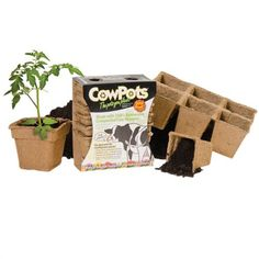 CowPots™  Developed on a Connecticut dairy farm, these biodegradable pots are 100% made in the USA. Tested and proven to help plants establish faster and increase fruit sets by 10%! #Gardening #PlantingPots #Biodegradable CowPots Biodegradable Pots | Gardeners Edge