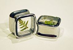 square silver plug earrings with real fern fronds inside resin. romantic story!
