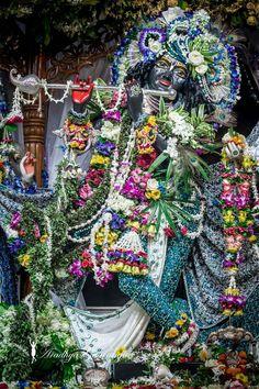 Iskcon Krishna, Shree Krishna, Radhe Krishna, Lord Krishna, Virat Kohli Wallpapers, Lord Jagannath, Radha Krishna Images, Deities, Hare