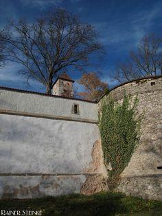 Burg Veldenstein und das Bernsteinzimmer | Kult-Urzeit