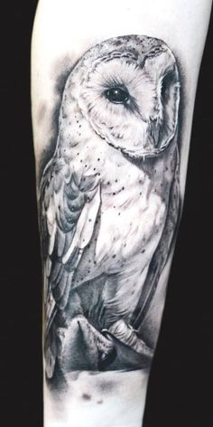 Some owl tattoos are abstract and others are cartoonish, but this tat of a barn owl is very realistic looking and the tattoo artist did a great job inking the design. The tattoo is inked in black and white and depicts a beautiful barn owl perched on a branch.