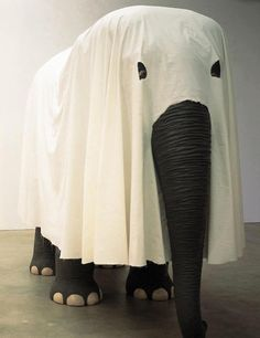 You think anyone will guess who I am?elefanta con burka