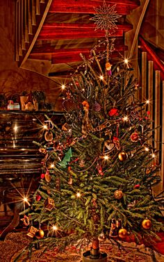 HDR photo from Christmas 2011 by my husband.
