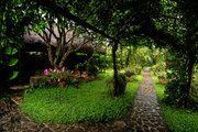 wedding reception @ Moon Garden Tagaytay Wedding Reception, Wedding Venues, Tagaytay, Moon Garden, Relax, Plants, Beautiful, Marriage Reception, Wedding Reception Venues