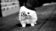 OMG, di imortales! OMFG ! Soo cute!!!*--*