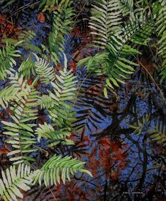 Fern Abstract By Carol McArdle