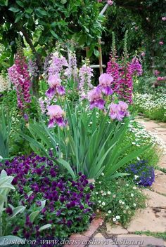 SHADES OF BLUE - Lilac, lavender, blue, purple, violet.... Iris, delphenium and more.