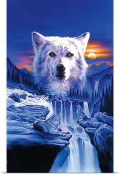 Robin Koni Poster Print Wall Art Print entitled Wolf Waterfall, None Tier Wallpaper, Wolf Wallpaper, Animal Wallpaper, Wolf Photos, Wolf Pictures, Anime Wolf, Native American Wolf, Wolf Artwork, Wolf Painting