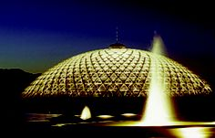 Come out & Join the the Anniversary Celebration of the Bloedel Conservatory on Saturday, December Hawaiian Dancers, Sleepless Nights, Conservatory, Move Forward, Greenhouses, Exhibitions, Hard Work, Concerts