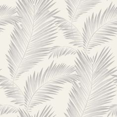 Add drama and style to any space with the contemporary Ardita Wallpaper from Imagine. It features a graceful repeating palm leaf pattern that will have you feeling the tropical breeze and a hint of metallic that lends a touch of sophisticated shimmer. Pearl Wallpaper, Neutral Wallpaper, Glitter Wallpaper, Tree Wallpaper, Wallpaper Paste, Laptop Wallpaper, Adhesive Wallpaper, Leaves Wallpaper, Closet Wallpaper