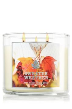 Sweater Weather 14.5 oz. 3-Wick Candle - Slatkin & Co. - Bath & Body Works