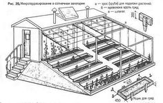 Солнечный вегетарий – теплица нового поколения: идея, устройство и эффективность