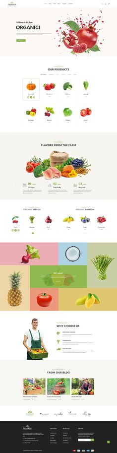 Organive - Organic Store & Eco Food Products PSD Template #fruit wordpress #fruits and vegetables #fruits store • Download ➝ https://themeforest.net/item/organive-organic-store-eco-food-products-psd-template/21239733?ref=pxcr