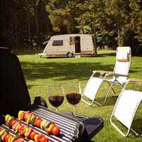 Clippesby Hall's award winning touring and camping park is spread over 8 distinctive areas, providing you with a choice between more secluded individual pitches set into the natural woodland, and more open, family-oriented lawns, most with electricity connection available.