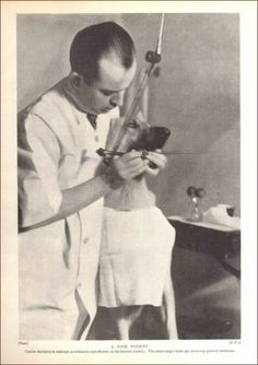 Veterinarian Dog Dental Dentistry Vintage Print Authentic 1935