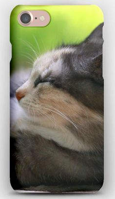 iPhone 7 Case Cat, Lying, Grass, Rest, Sleep