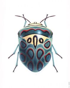 Picassso Shield Bug by Bernard Durin