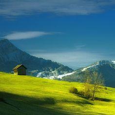 Swiss by Bika