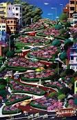 Lombard Street Lombard Street, Places Ive Been, San Francisco, Plants, Travel, Viajes, Destinations, Plant, Traveling