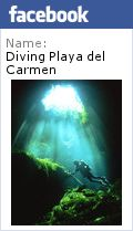 Scuba diving Angelita Cenote Cavern Cave in The Riviera Maya Tulum Playa del carmen Earth Surface, Natural Phenomena, Cruise Vacation, Riviera Maya, Beach Photos, Tulum, Day Trip, Scuba Diving, Cave