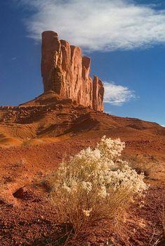 Camel Butte, Monument Valley, Arizona: Agathla Peak, El Capitan, Owl Church Rock; photo by Mike Reyfman