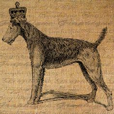 Airedale terrier digital fabric transfer. Airedale Terrier dog art portraits, photographs, information and just plain fun. Also see how artist Kline draws his dog art from only words at drawDOGS.com #drawDOGS