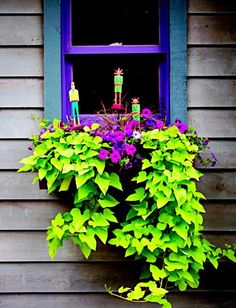 Bright purple petunias are the quietest part of this arrangement. Almost-neon green sweet potato vine billows out in a bold statement. Three artsy planter stakes provide exclamation points to the energetic look.