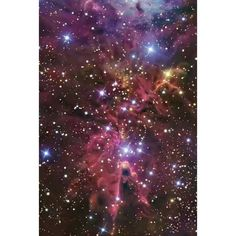 provocative-planet-pics-please.tumblr.com The Cone Nebula #space #stellar #stars #planets #planetary #nebula #nasa #iss #universe #milkyway #hubble #spitzer #telescope #galactic #galaxies #ESA by splitmind19 https://instagram.com/p/9qN2XwpF_l/