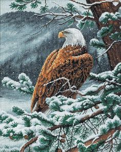 Dimensions Needlecrafts Counted Cross Stitch, Eagles Eye View