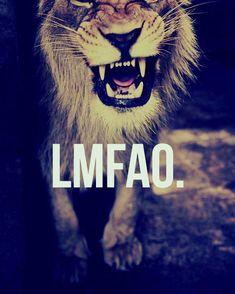 lion my fucking ass off