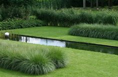 Garden Design Ideas & Inspiration : Two types of grasses, a Pennisetum and a Miscanthus, are used by Belgian design firm Archi-Verde as free-standing hedges. Landscaping Supplies, Modern Landscaping, Backyard Landscaping, Landscaping Ideas, Backyard Patio, Pool Water Features, Water Features In The Garden, Hedges, Types Of Grass