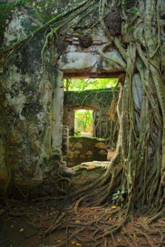 Doors, Windows and Portals
