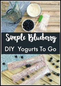 DIY yogurts to-go with this berry yogurt recipe put into refillable squeeze tubes. Simple & easy to make with no added sugar or artificial colors & flavors. You can make this with your favorite berries including blueberries, strawberries, and raspberries. Perfect to pack in school lunches.
