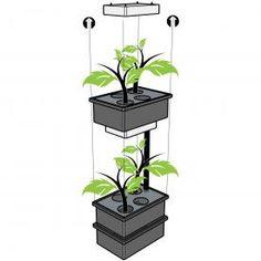 Hydroponic Aeroponics grow system, 2 trays fit 4 medium-large plants each, 2-700 w LED grow lights