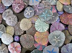 Inspirational Patterns that can be interpreted by #SICIS The Art Mosaic Factory and be created into a custom #mosaic